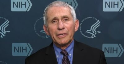 Texas and Florida's triumphs over Covid-19 defense strategies perplex Dr. Fauci