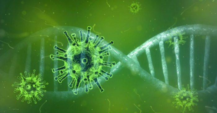 Evidence of artificial origin of virus 'far outweighs' any other theories, says former Trump official