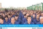 Netherlands declares Chinese Communist Party's persecution of Uighurs a genocide