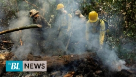 Amazon Fire: 4 members of an NGO arrested